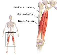 yoga hamstring blessure