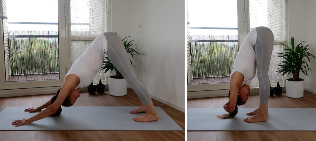 yoga houdingen voor de onderrug, hondhouding en uttanasana