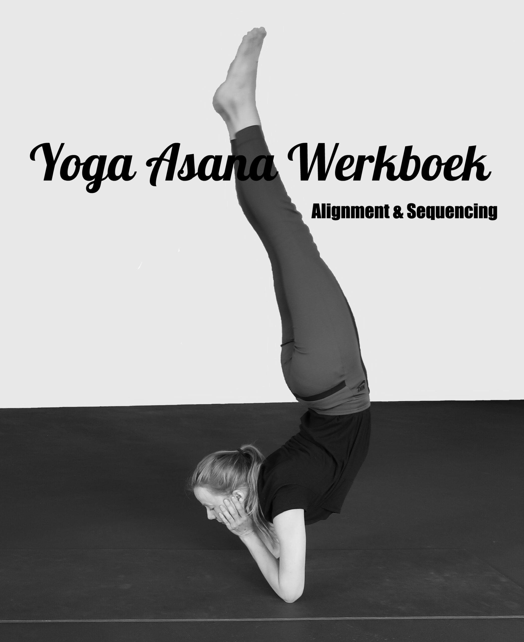 yoga werkboek alignment en sequencing